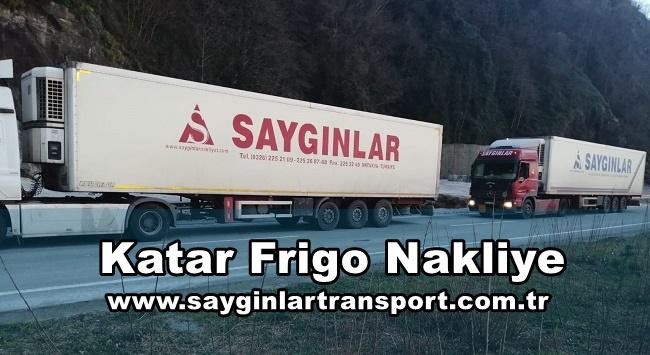 Katar Frigo Nakliye