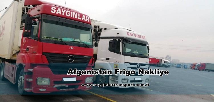 Afganistan Frigo Nakliye